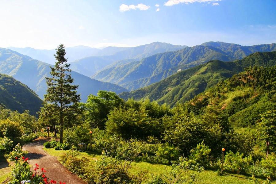 新竹五峰 - 樂哈山露營區 - 老闆。冷氣可以調小一點嗎? :: 阿舍的精彩生活