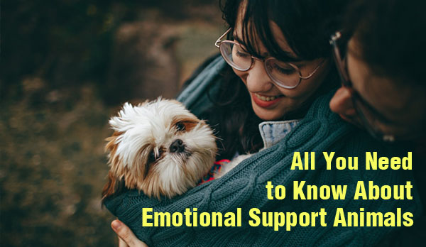 Emotional Support Animals - ESA - mental health - pets - home - Bacolod blogger