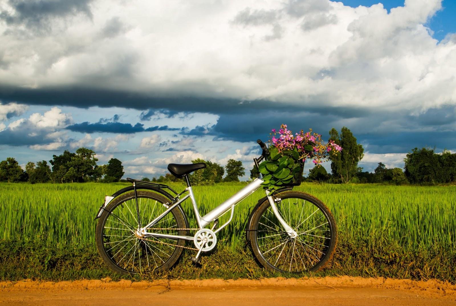 Ultimate Editing Bike Car Background