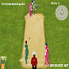 Play ICC Cricket World Cup 2011 game