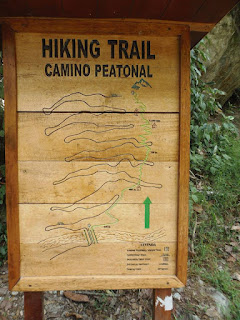 hiking trail, machu pichu, diabetes