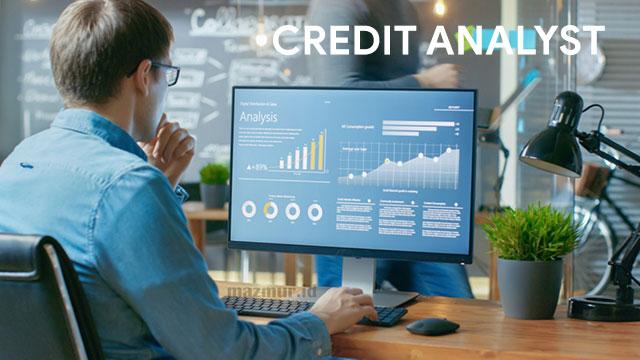 Pengertian Credit Analyst Tugas dan Tanggung Jawabnya
