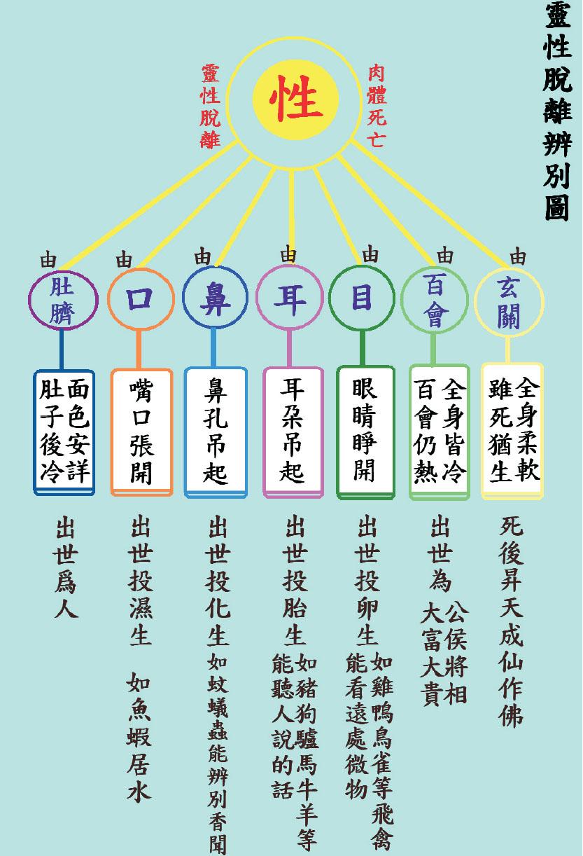 中興大學陳玉琪講師顯化故事