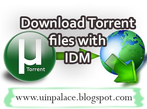 download idm torrent