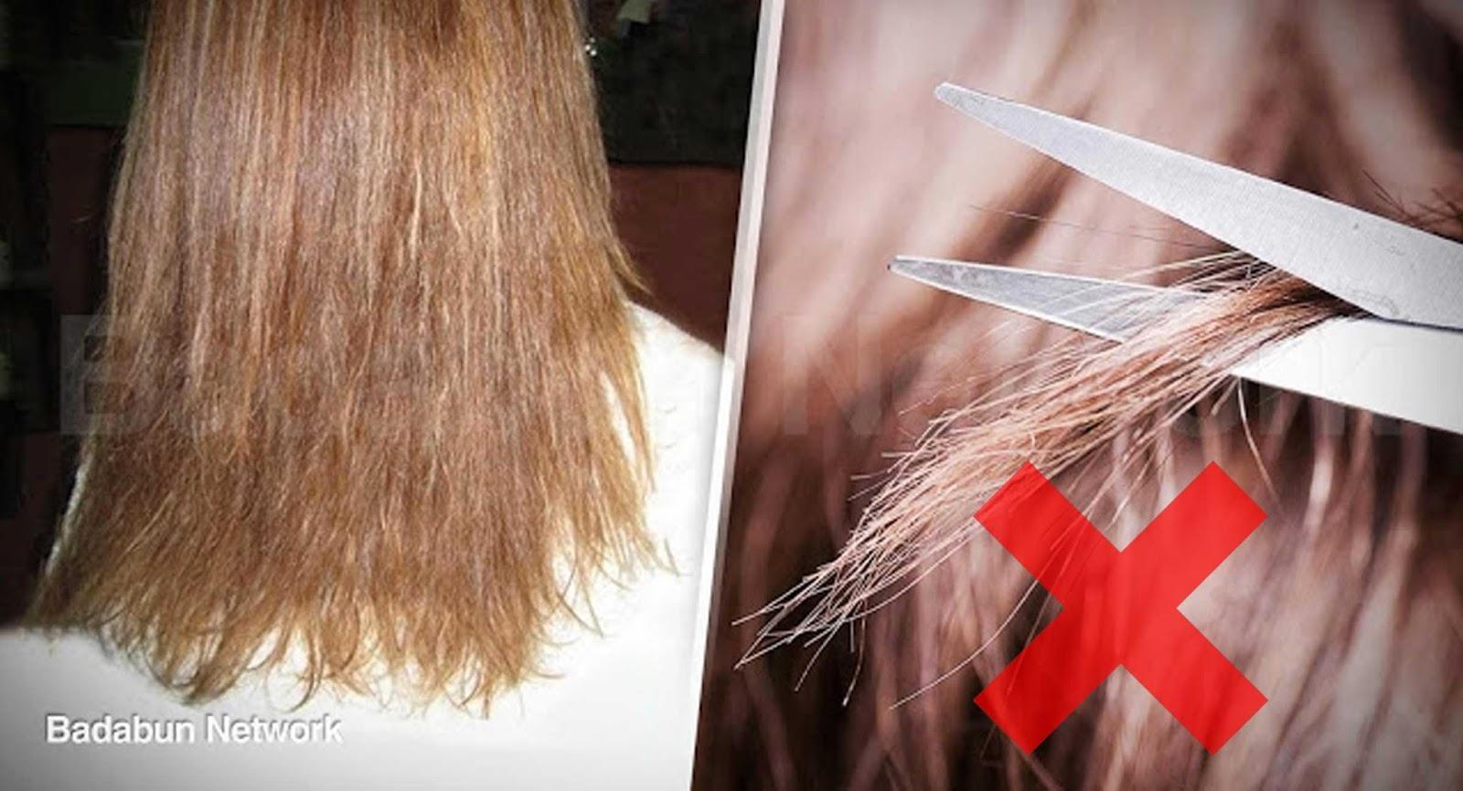 El mejor medio contra la alopecia a los hombres