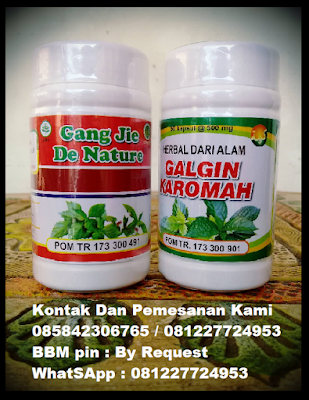 Image OBAT BATU GINJAL HERBAL DE NATURE