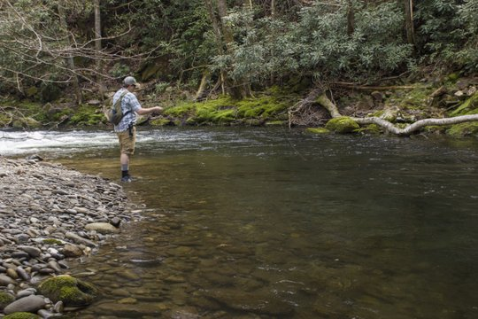 Deep Creek in the Smokies and a perfect bend pool for fly fishing