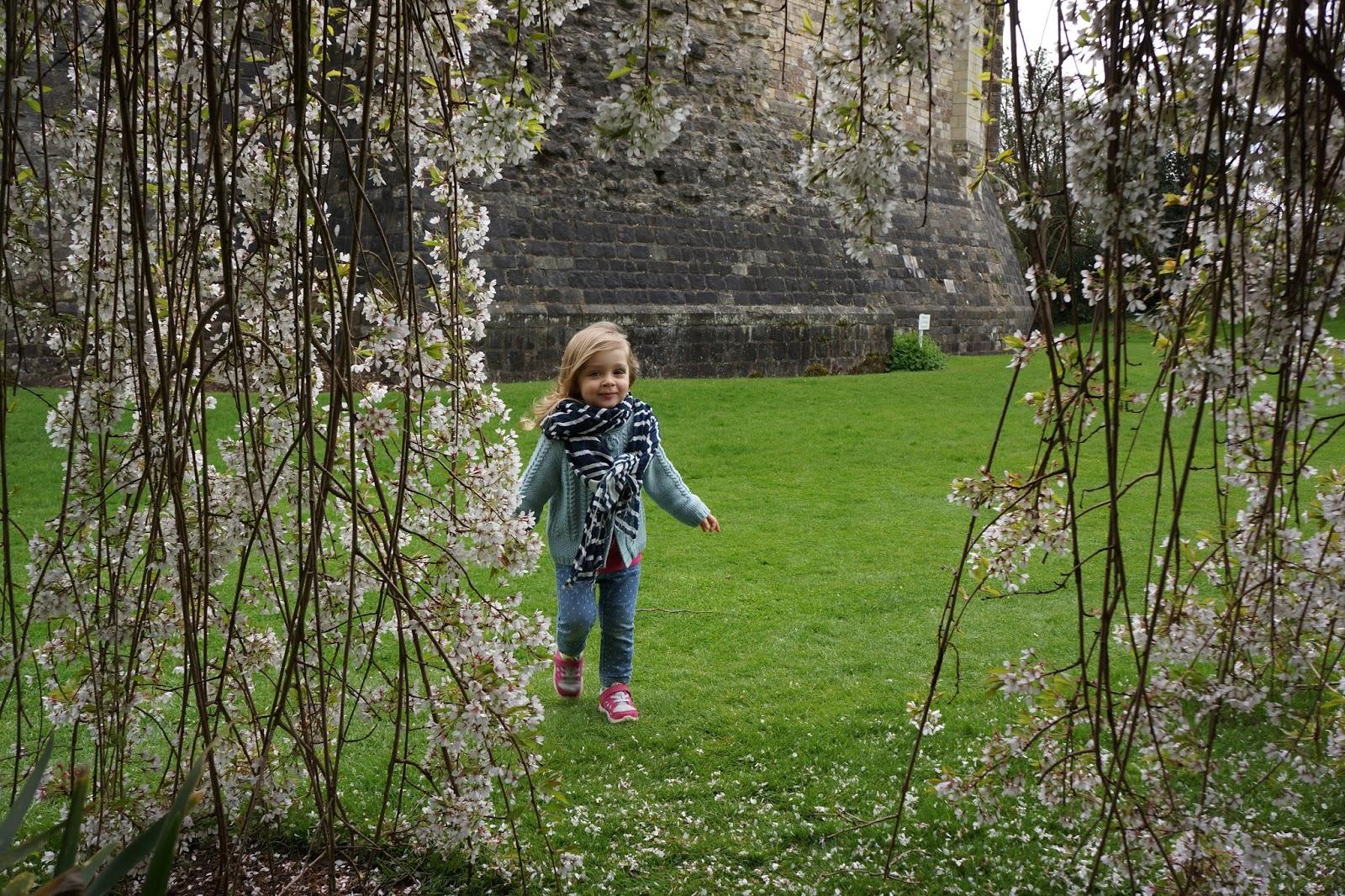 little girl amongst flowers