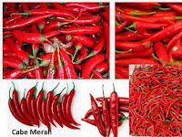 Tips Bisnis Menjalankan Usaha Cabe Merah Yang Menguntungkan