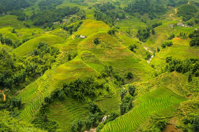 Highlights of The Trip Sapa & Mu Cang Chai Packages Tours 1