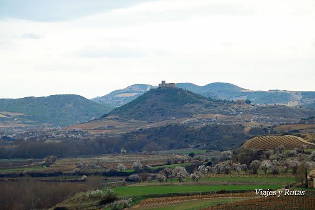 Castillo de Davalillo, Briones