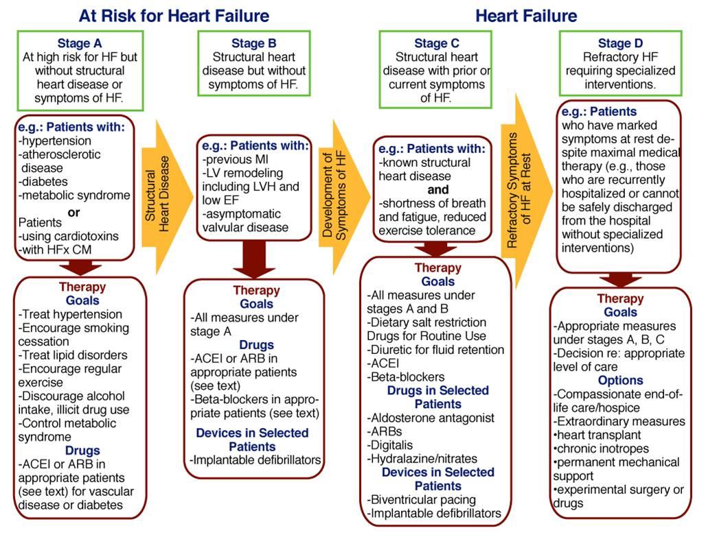 Tips Diet Pada Penyakit Jantung Rematik