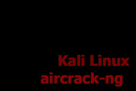 kali linux guida