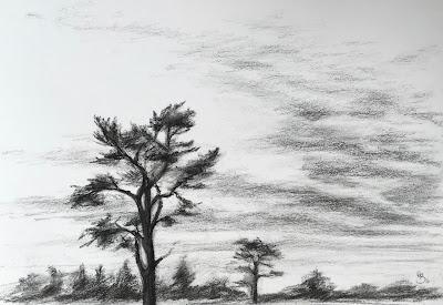 'Bramshott Common' Sketch