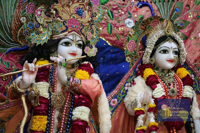Sri Radha Vrindavan Chandra - Glimse - Photos - Darshan - Vrindavan - India