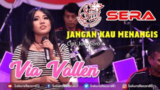 Lirik Lagu Jangan Kau Menangis - Via Vallen feat. Arya Dipangga