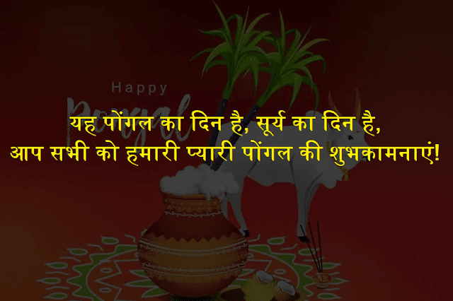 Pongal 2019 Wishes in Hindi