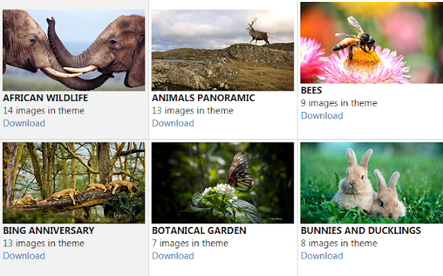 nature themes animals