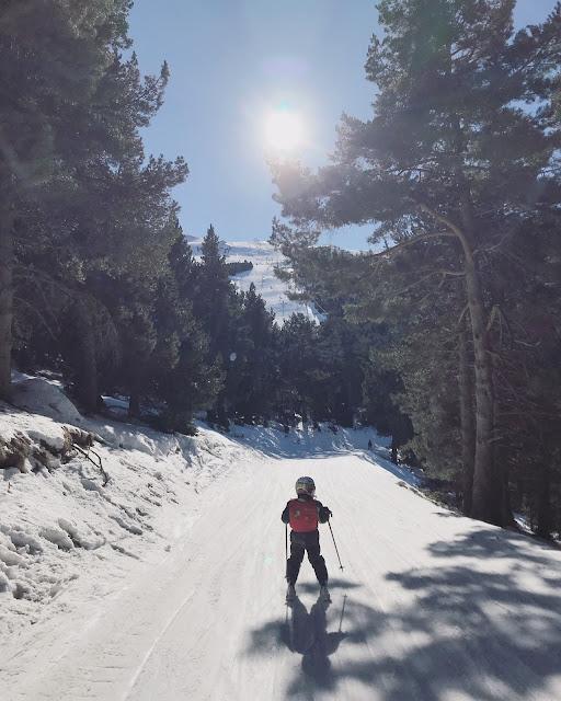 Niño esquiando entre árboles