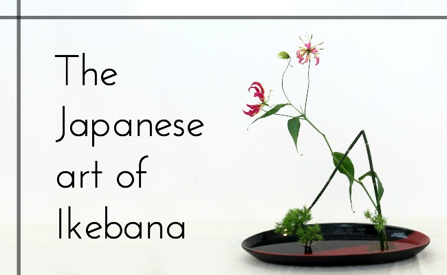 The beautiful art form of Japanese ikebana flower arranging