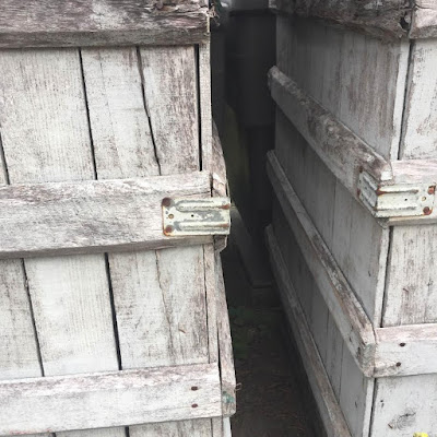 Truro Vineyards grape crates for harvest