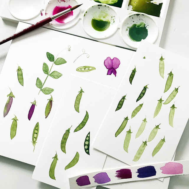 watercolor peas, watercolor sketches, garden sketches, surface pattern design, design process, Anne Butera, My Giant Strawberry