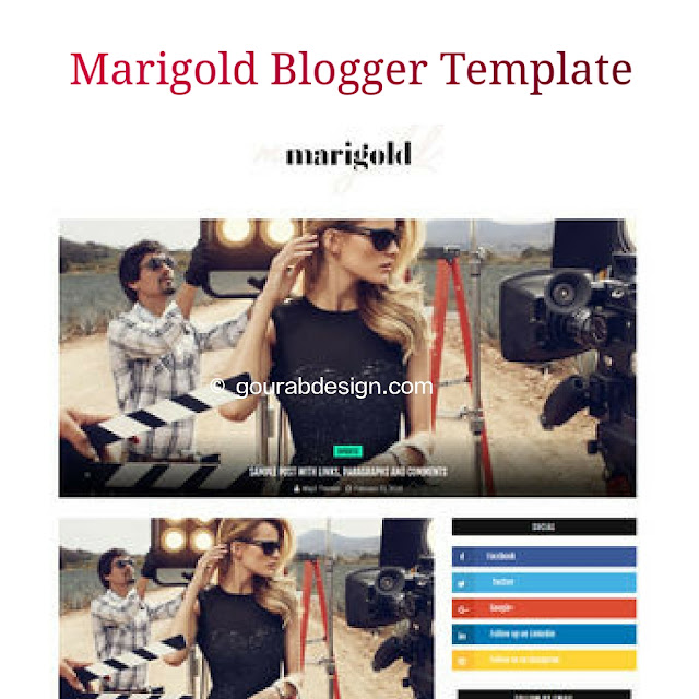 marigold personal blogger template