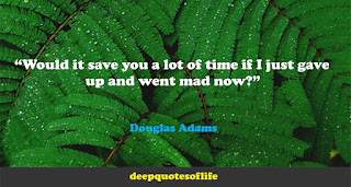 """Would it save you a lot of time if I just gave up and went mad now?""  ― Douglas Adams"