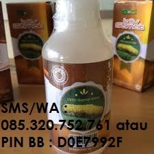 http://www.obattelingadangangguanpendengaran.id/