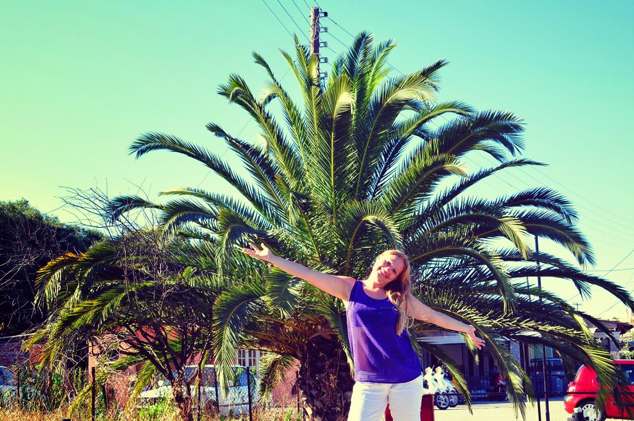 palmy-na-wakacjach