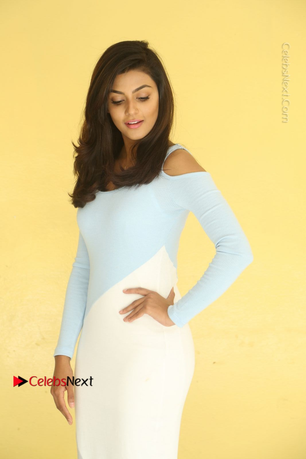 Anisha Ambrose Latest Pos Skirt At Fashion Designer Son Of Ladies Tailor Movie Interview Com 0681 Anisha Ambrose Latest Photos In White Long Leg Split Skirt At Fashion Designer Son Of