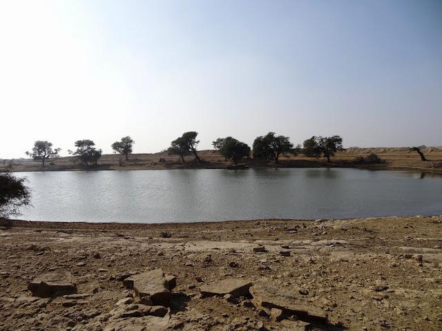 Jassie Oasis - Jaisalmer, Rajasthan - Pick, Pack, Go