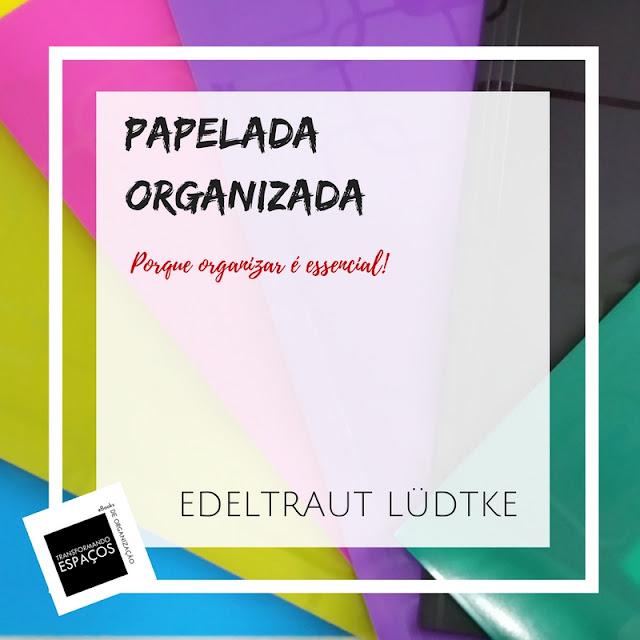 eBook Papelada Organizada