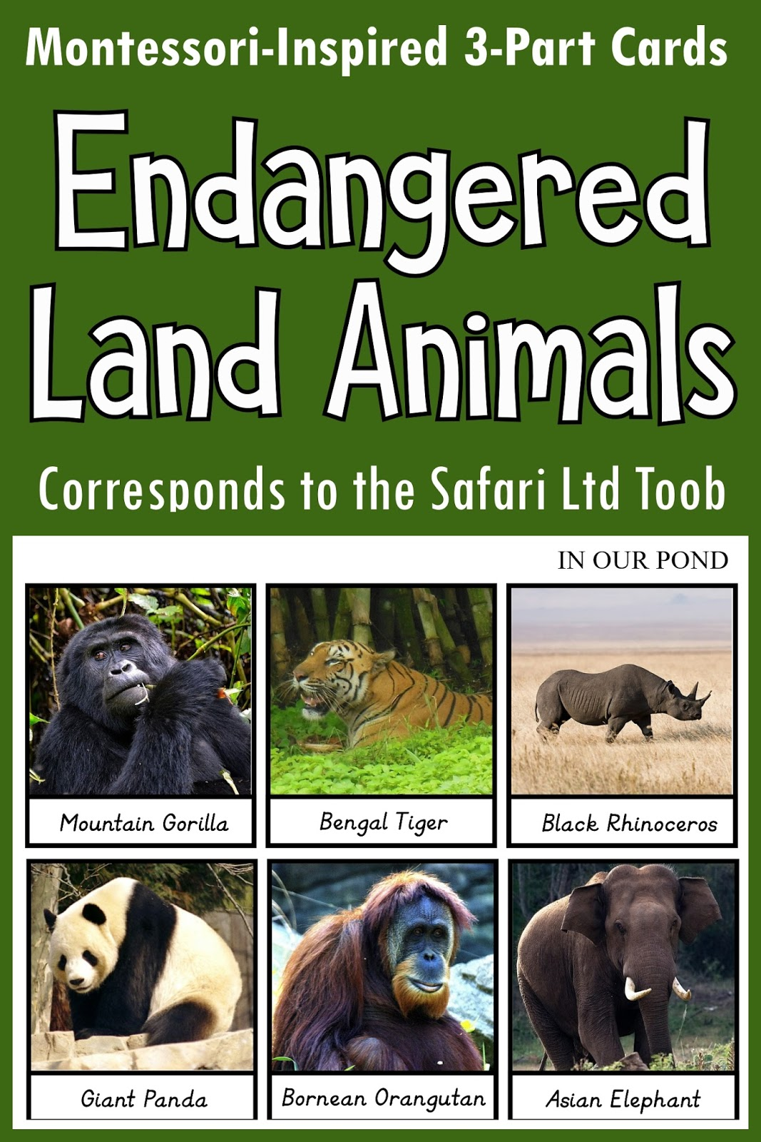 Endangered Land Animals 3 Part Cards