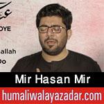 shiahd.blogspot.com/2017/09/mir-hasan-mir-nohay-2002-to-2018.html