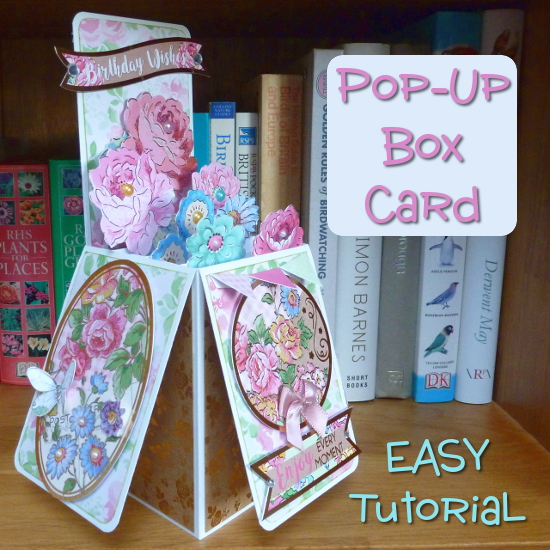 EASY DIY Pop Up Box Card Instructions and Tutorial Make Your Own Beautiful Cards Step by Step Flower Box With CraftyMarie.com