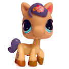 Littlest Pet Shop Special Horse (#1621) Pet