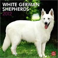 Wallpaper Backgrounds: White German Shepherd