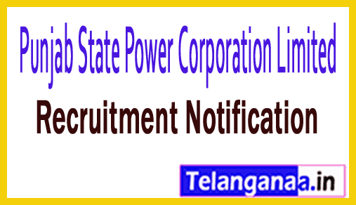 PSPCL Punjab State Power Corporation Limited Recruitment Notification