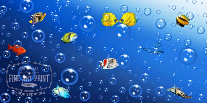 http://www.fineartprint.de/bilder/viel-geblubber-im-kleinen-aquarium-,11392741.html