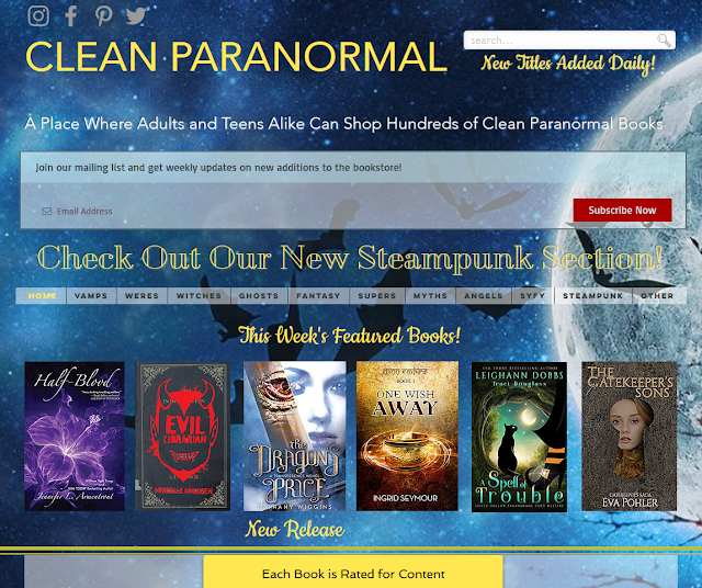 cleanparanormal.com