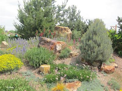 garden, Gardens at Spring Creek, Fort Collins, CO