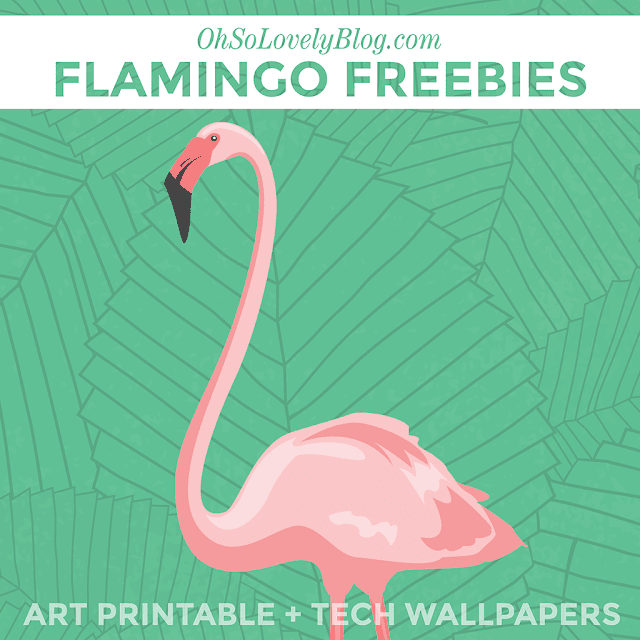 http://www.ohsolovelyblog.com/freebie-flamingo-printable-tech-wallpapers/