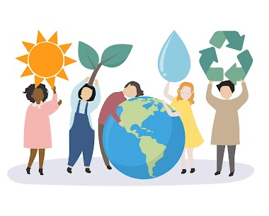 Environment-Friendly Alternatives and Where to Find Them