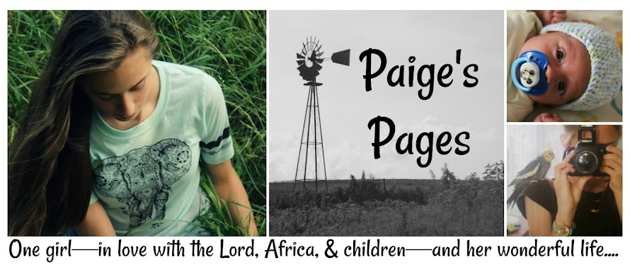 Paige's Pages