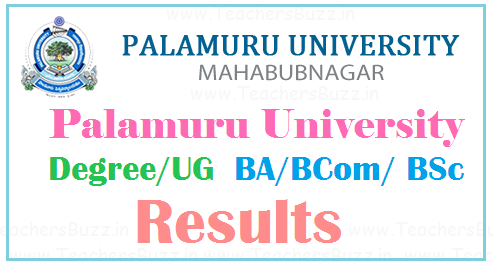 Palamuru University Degree Results 2019 | PU BA/ BCom/ BSc UG 1st