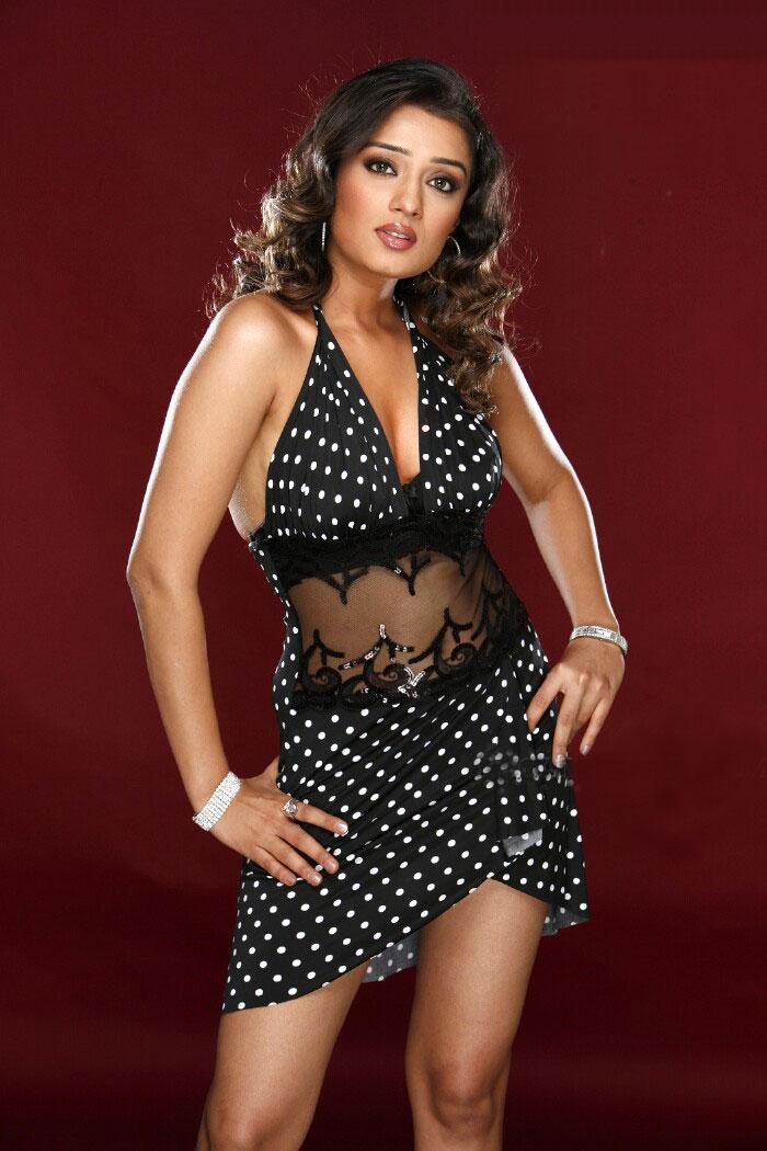 Nikita Thukral Hot Stills - andhraidle