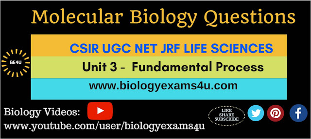 CSIR UGC NET JRF Life sciences - Molecular Biology Questions (Unit -3 Fundamental Process)