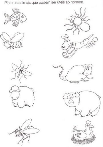 Desenhos De Animais Domesticos Para Colorir Educacao Infantil Mmod