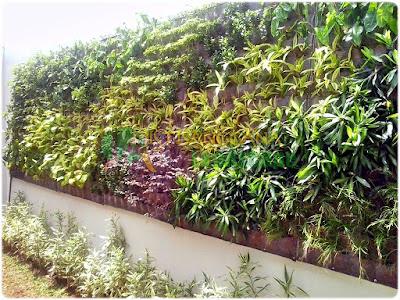 Desain Taman Vertikal (Vertical garden) Dari Tukang Taman Jakarta